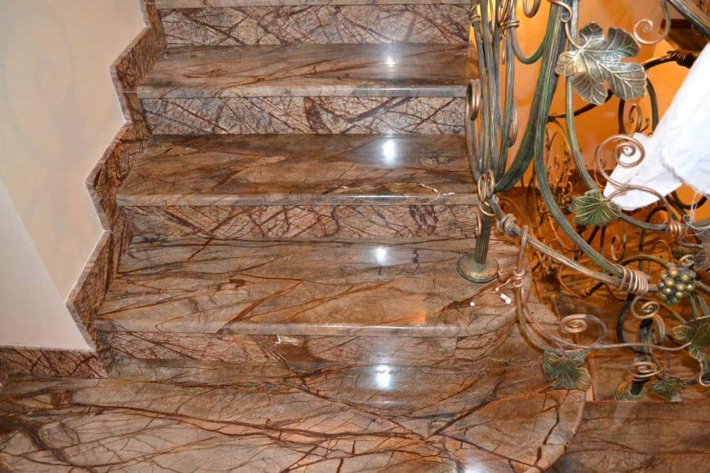 rain-forest-escalier