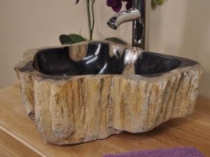 vasque-bois petrifié