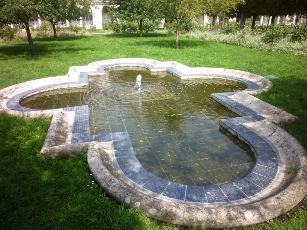 Bassin Jardin 1
