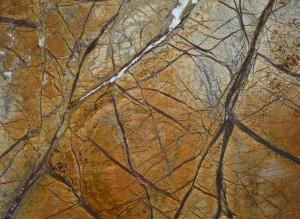 Rainforest-Brown