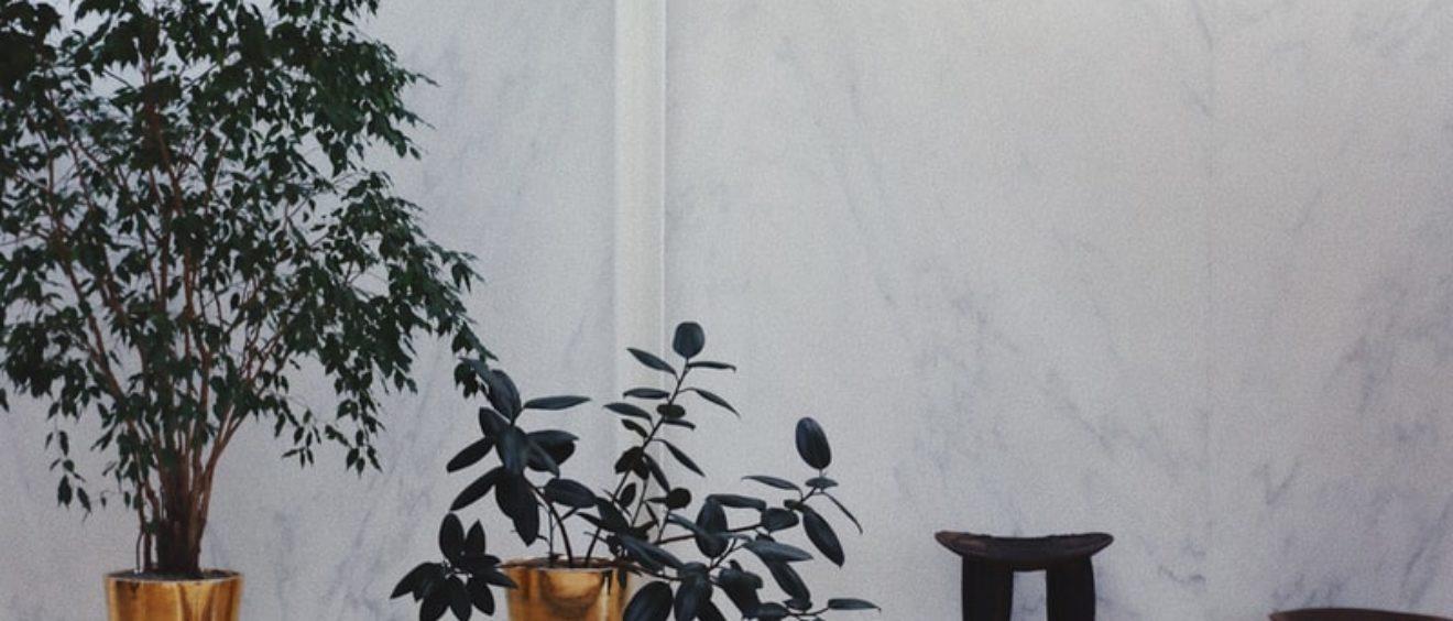 Mur en marbre de carrare