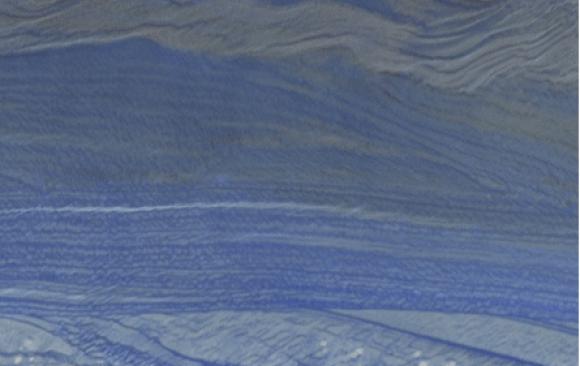 Bleu Macauba